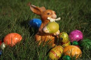 Ein durch Schoko-Eier kontaminiertes Osternest.